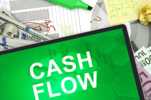 cash flow revenue - planetfem business